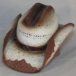 HAT 1541