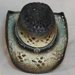 HAT 1542