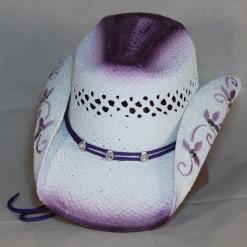HAT 1543