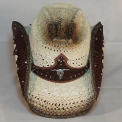 HAT 1549