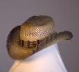 HAT 1631
